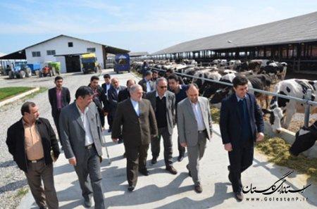 بازديد استاندار از شهرستان آق قلا