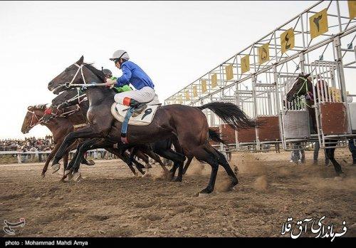 هفته قهرمانی رقابت های اسب دوانی کورس پاییزه آق قلا برگزار شد