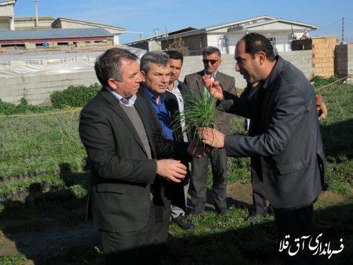بازدید فرماندار شهرستان آق قلا از طرح های اجرایی منابع طبیعی و آبخیزداری