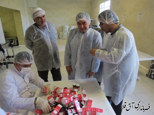 """بازدید فرماندار شهرستان آق قلا از شرکت""""داروسازی گیاهی نیاک""""با اشتغالزائی 100 نفر"""