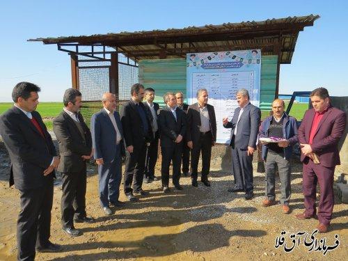 پروژه آبیاری تحت فشار با اعتبار 3 میلیارد و 300 میلیون ریال در شهرستان آق قلا افتتاح شد