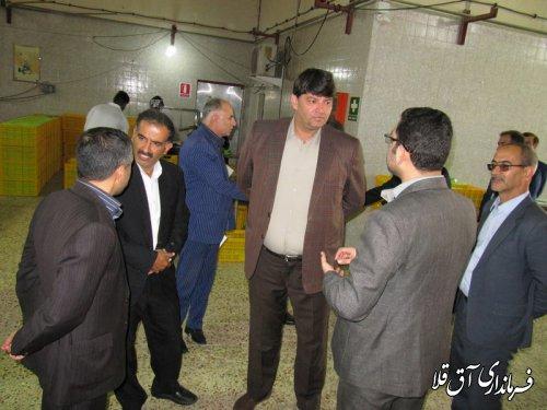 نماینده عالی دولت از دو واحد تولیدی شهرک صنعتی آق قلا بازدید بعمل آورد