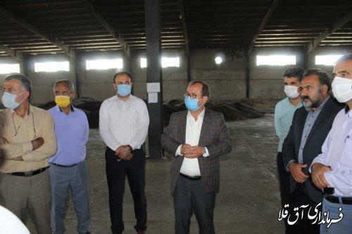 پیش بینی برداشت 80 هزار تن محصولات استراتژیک از اراضی کشاورزی شهرستان آق قلا